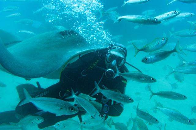 Corse : une destination de rêve pour les passionnés de sport